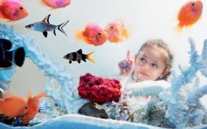Животное в доме: вред и польза для ребенка