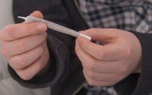 Употребление марихуаны разрушает мозг подростков