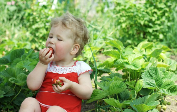 Часто болеет ребенок? Укрепите его иммунитет!