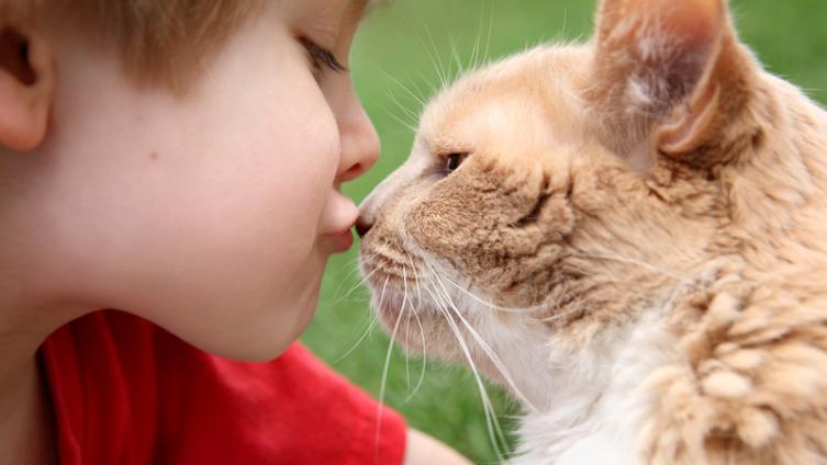 Детям больше нравится поводить время с питомцами, чем с братьями и сестрами