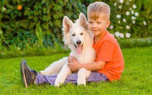 Собаки помогают детям справиться со стрессом лучше, чем родители