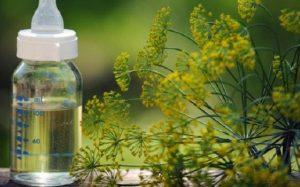 Как давать укропную воду детям и взрослым — показания, дозировка и рецепты приготовления в домашних условиях