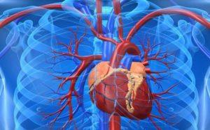 Беременность при пороках сердца