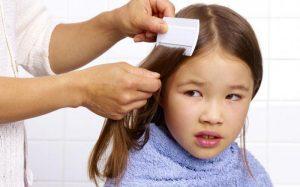 Вши у ребенка: что делать и как лечить?