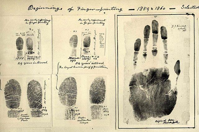 Могут ли отпечатки пальцев рассказать о талантах ребёнка?