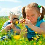 Можно ли развить у ребенка природный интеллект?