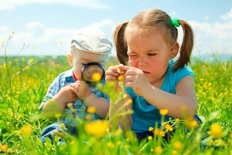 Первая зелень для ребенка