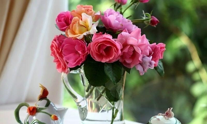 Компания scarlet-flower.by: порадуй своего близкого человека цветами