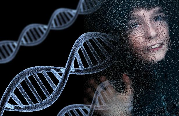 Нейробиологи уточнили функции связанного саутизмом гена
