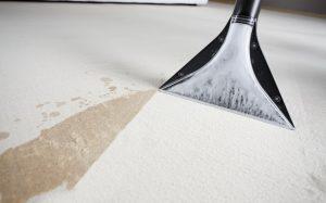 Чистый диван с мягкой обивкой — дело профессионалов