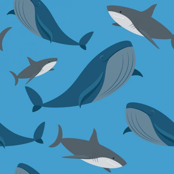 «Синий кит» и другие опасные игры: как уберечь подростка